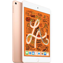 iPad Mini 5 4G+Wifi 64GB (Mới 99%)